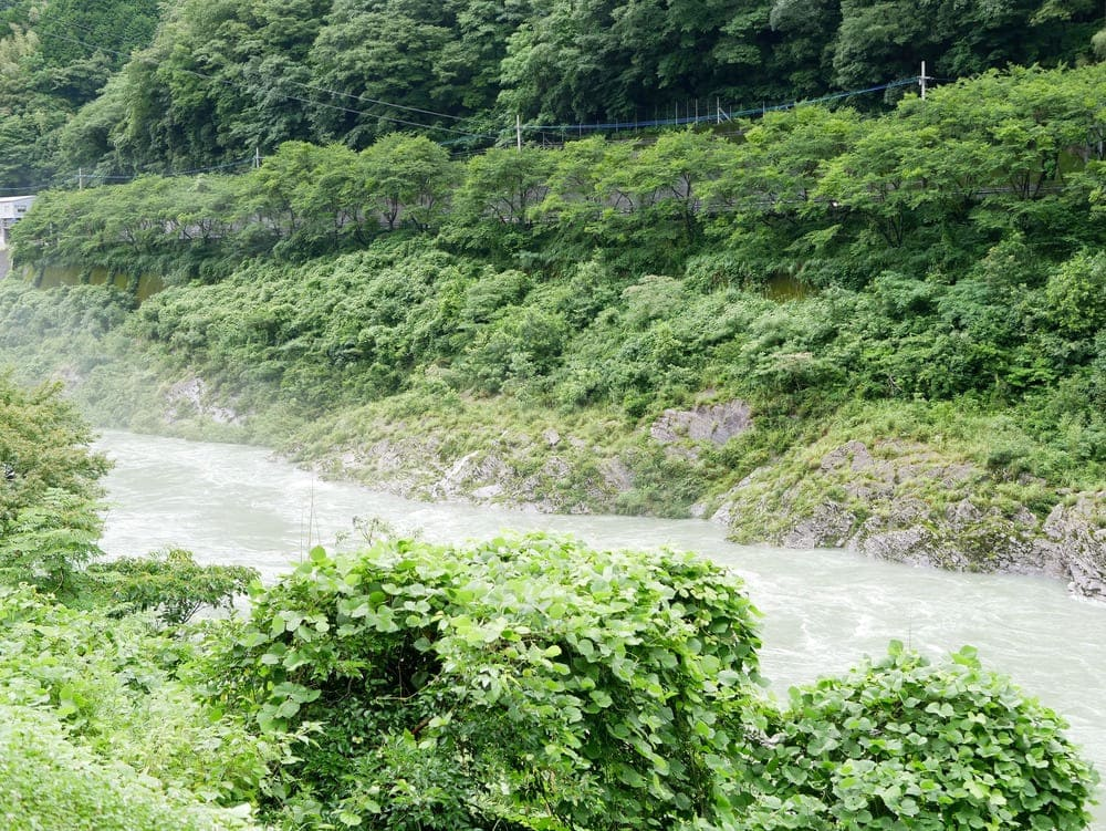 ハッピーラフト側の川
